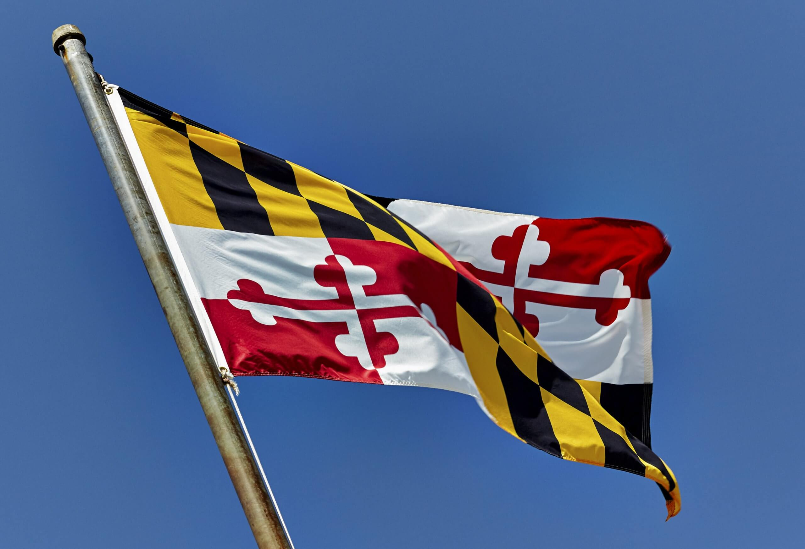 Maryland State Flag, sports betting